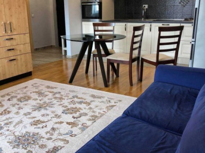 Apartament cu 2 camere spre vanzare in zona Corneliu Coposu!